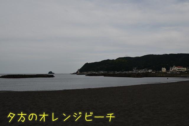 d-D75_5804.jpg