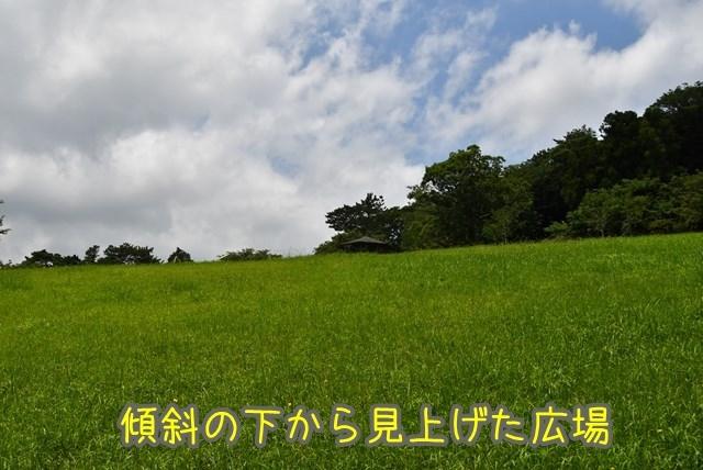 d-D75_6673.jpg