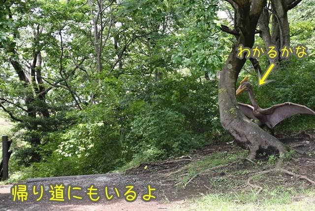 d-D75_6684.jpg