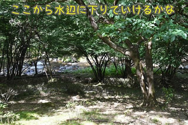 d-D75_7024.jpg