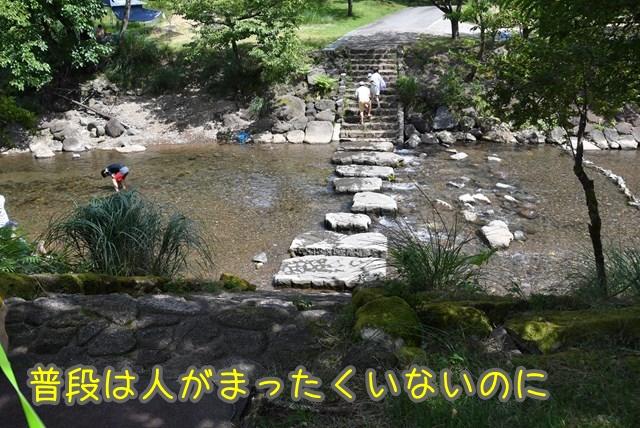 d-D75_7053.jpg