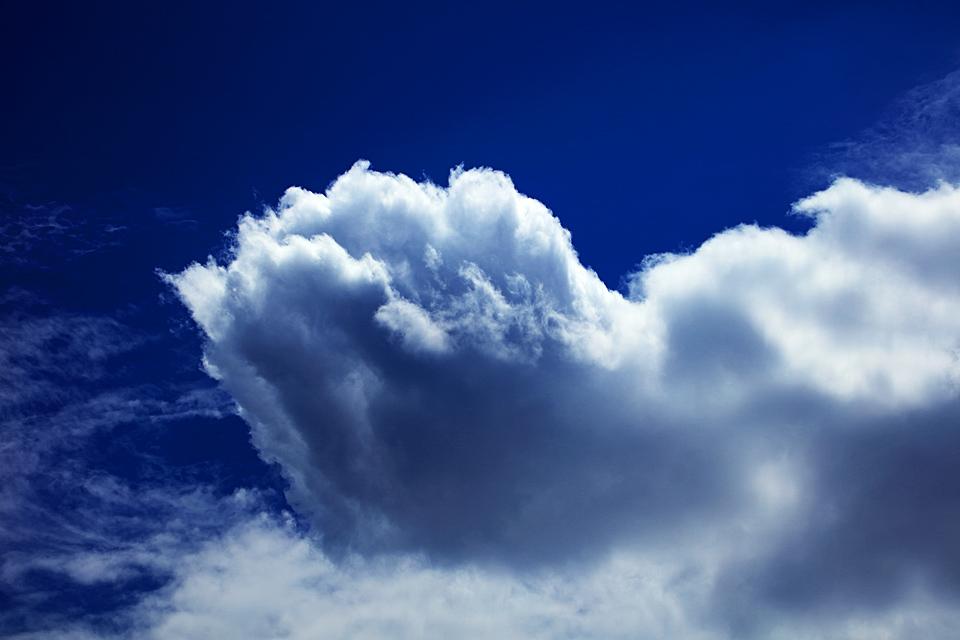存在を主張する積雲