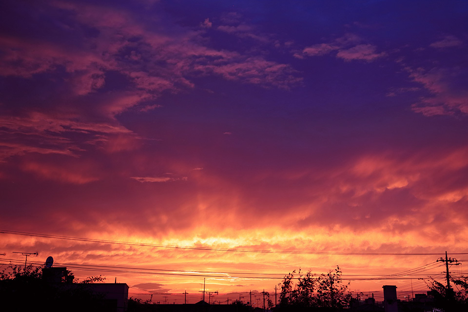北海道サマーの宵にモヒートもどきはよく似合う