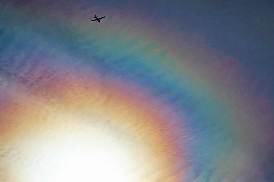 ある飛翔(その21)──光環あるいは陽の周りの午後の賑わい