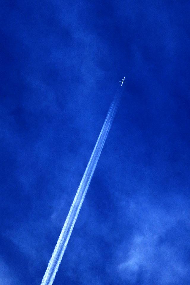 ある飛翔(その22)