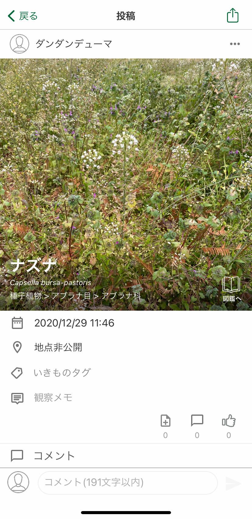 biome3.jpg