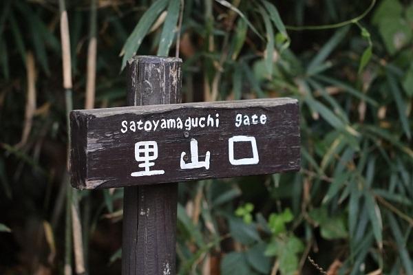 長池公園s
