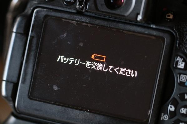 IMG_9005s.jpg