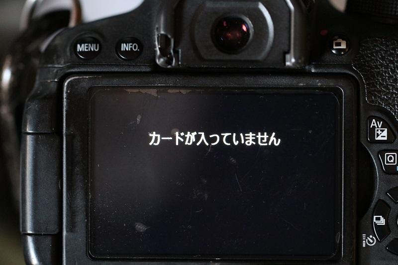 IMG_9006s.jpg