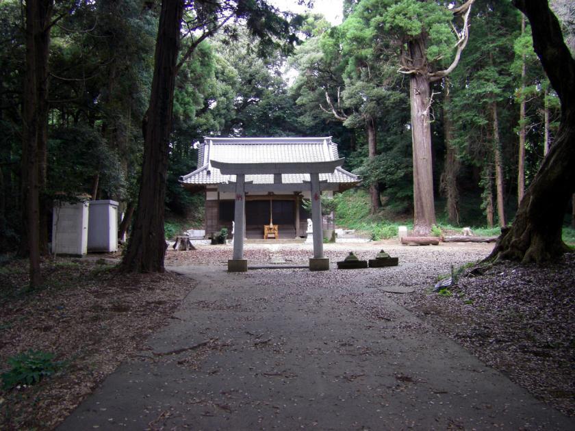 asahinookas.jpg