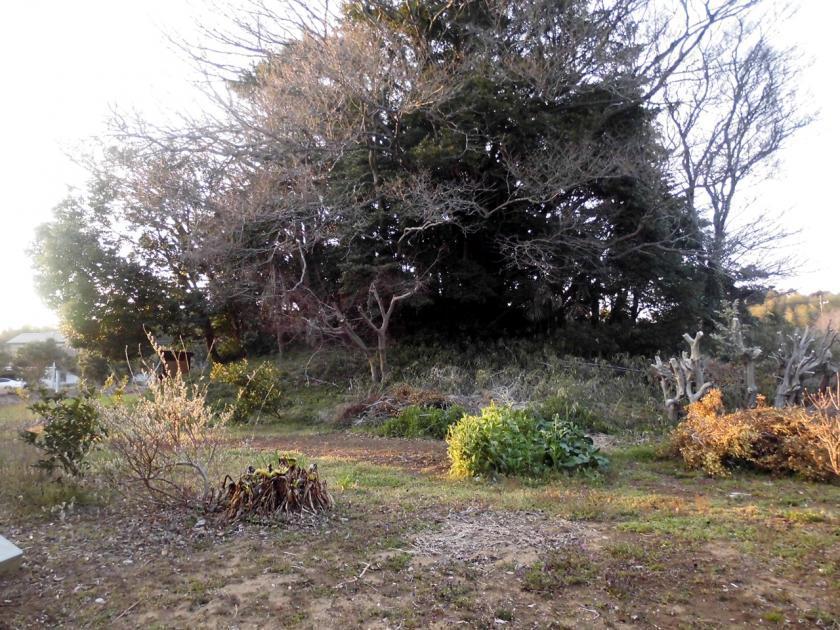 kajiyamae.jpg