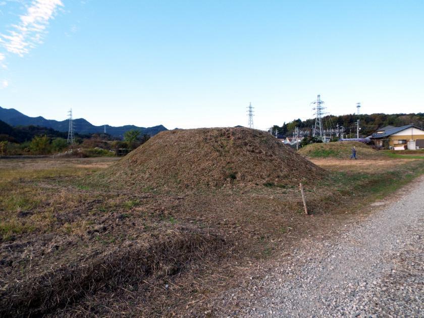mikuri105ne.jpg