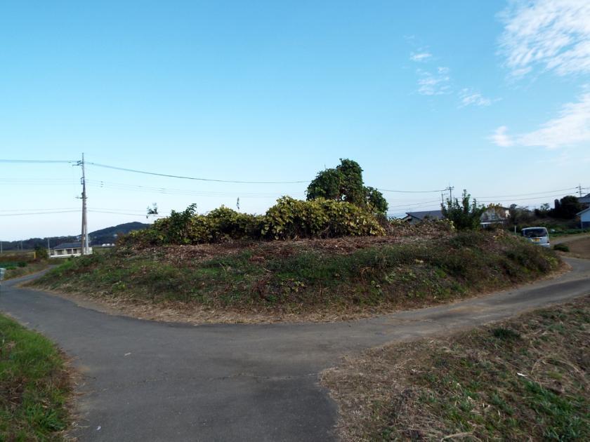 mikuri68sw.jpg