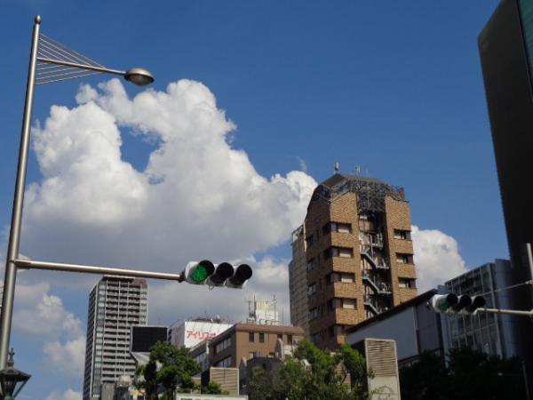 8/23 家食・ツナサラタ素麺