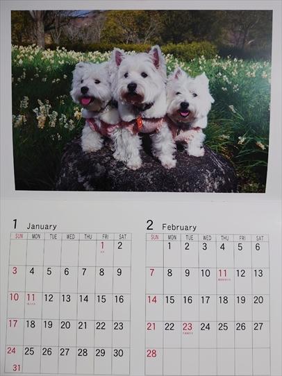 calendar1_202101211420405e9.jpg