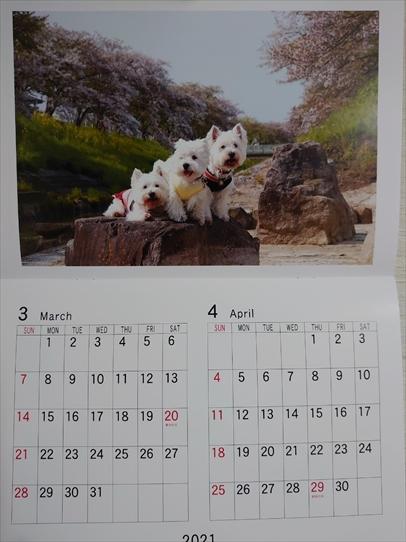 calendar2_202101211420391c2.jpg