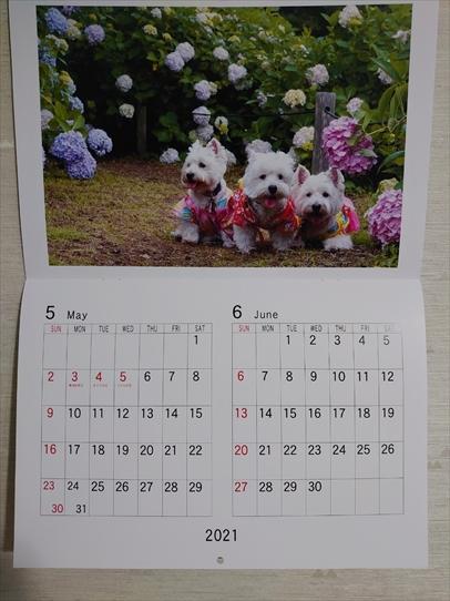 calendar3_20210121142038ddd.jpg