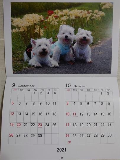 calendar5_20210121142755e96.jpg