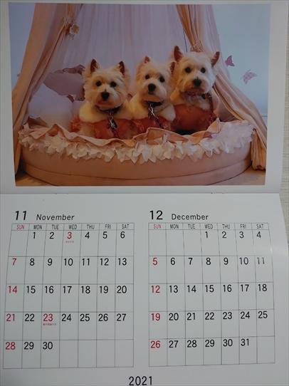 calendar6_202101211427547ba.jpg