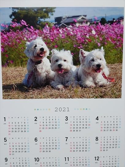 calendar7_202101211437331a4.jpg