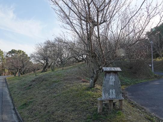 park_20210124170236d8d.jpg