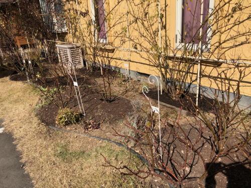 ブログ2月1アンドレエブの庭