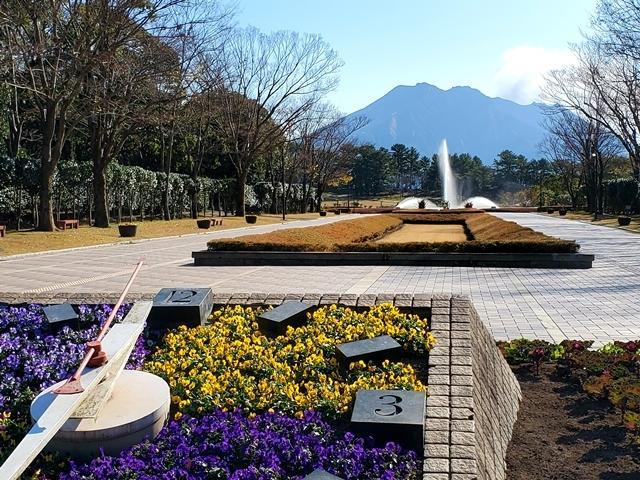 冬 吉野公園2