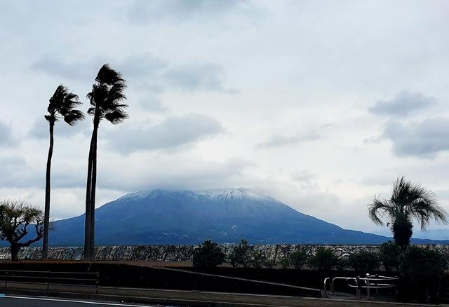 桜島冠雪1-1