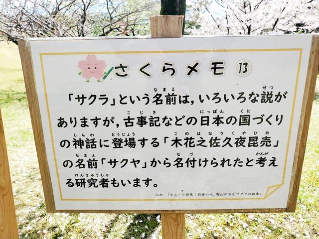 さくらの園5