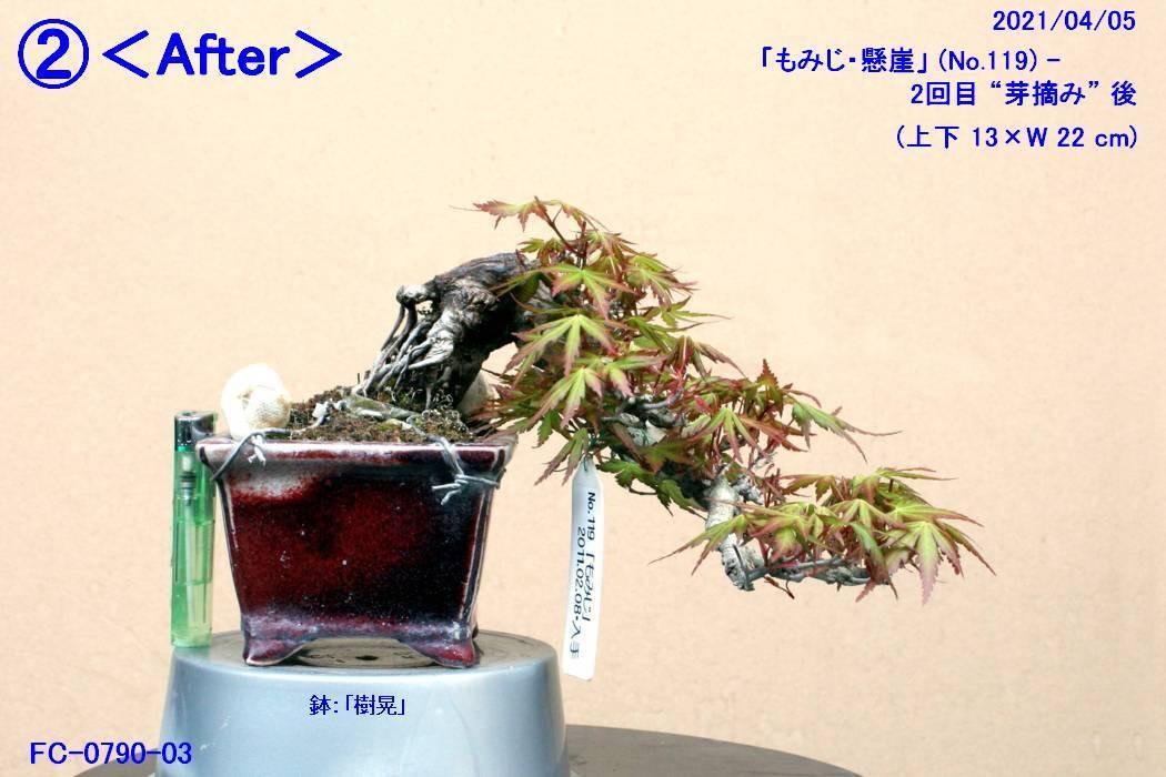 FC0790-03.jpg