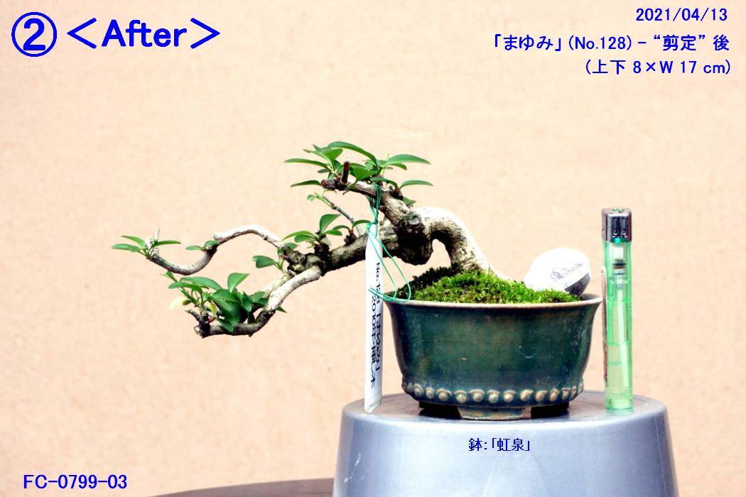 FC0799-03.jpg