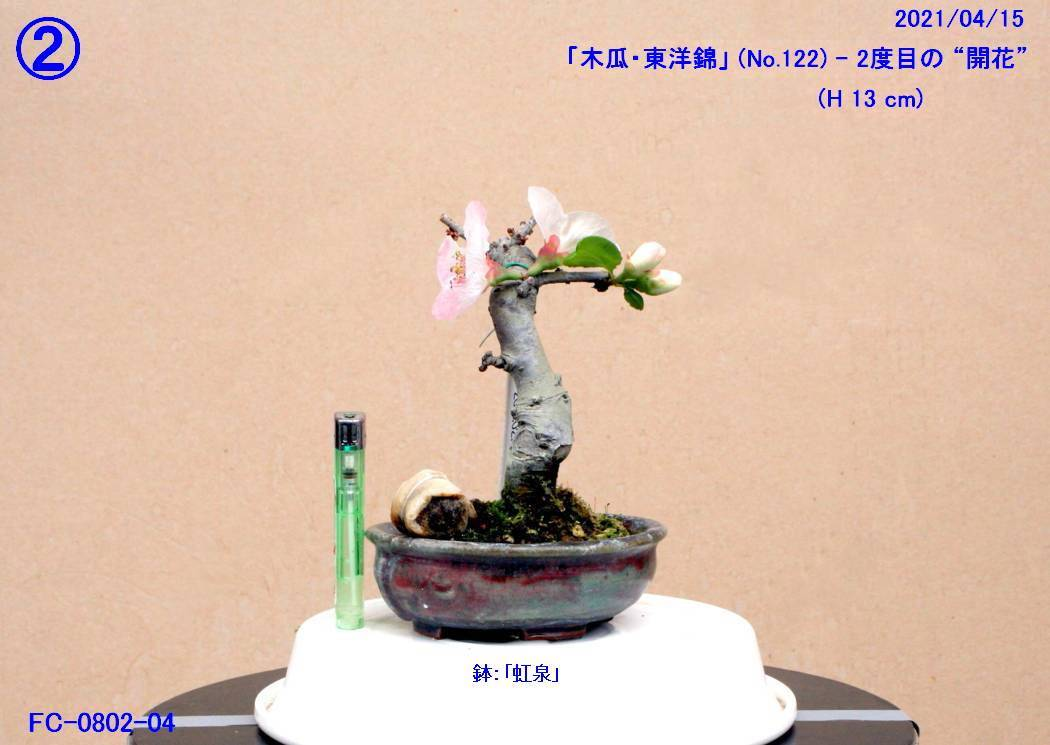 FC0802-04.jpg