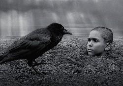 映画異端の鳥-01