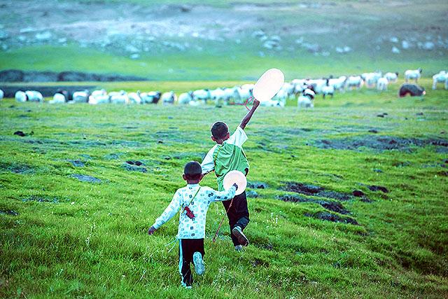 映画「羊飼いと風船」-02