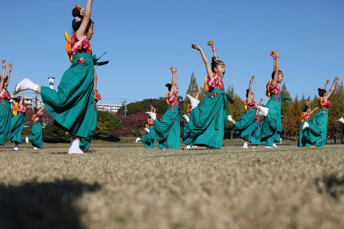 koiya20momogumi 75