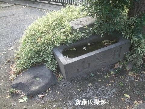 戸田市氷川神社・新発見