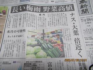 s-728野菜不足の記事