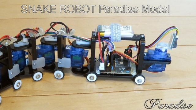 SnakeRobot_03.jpg