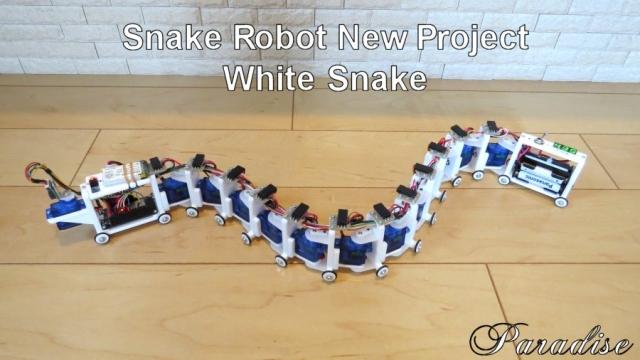 WhiteSnake5.jpg