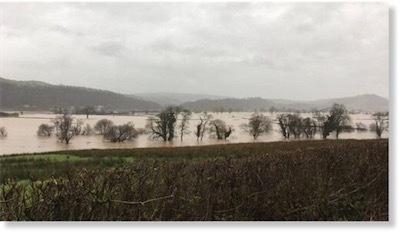 aa_117100290_floods.jpg