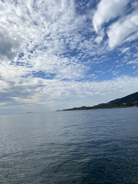 釣り 赤羽港 フグ 清水丸 カットウ釣り 竿頭