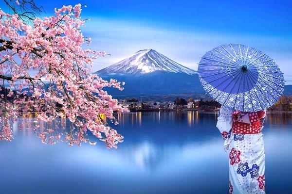 20210304台湾パイナップル日本注文殺到!支那の嫌がらせ輸入停止を受け・日本の小学校に提供・レアアース彷彿