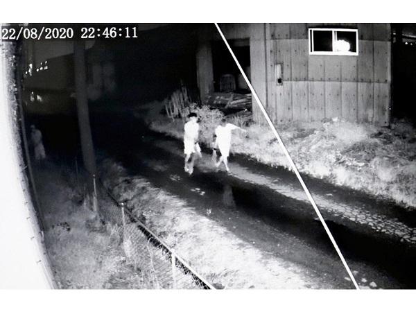20200826豚や牛の窃盗団は支那の組織!支那で食料危機「食べ残し禁止令」・トラック横転し住民が豚肉争奪戦