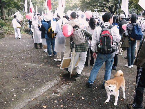 20111106「フジテレビ偏向報道周知デモ」