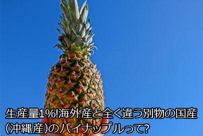 国産(沖縄県産)パイナップル20210304台湾パイナップル日本注文殺到!支那の嫌がらせ輸入停止を受け・日本の小学校に提供・レアアース彷彿