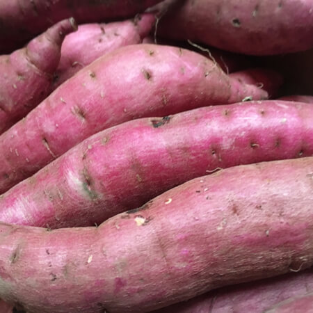 人気品種「紅はるか」が韓国に盗まれた!? ブランド農作物の流出が止まらない