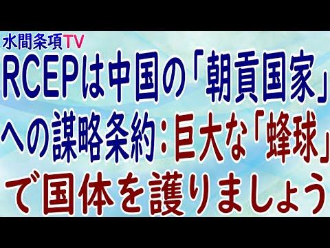 『RCEPは中国の「朝貢国家」への謀略条約:巨大な「蜂球」で国体を護りましょう』第298回【水間条項TV】