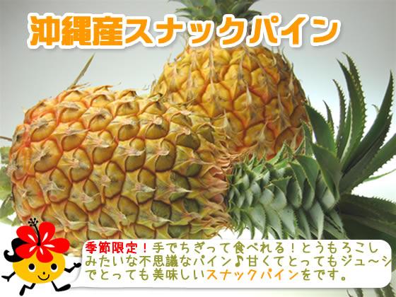 国産(沖縄県産)パイナップル