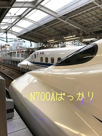 IMG_3318.jpg