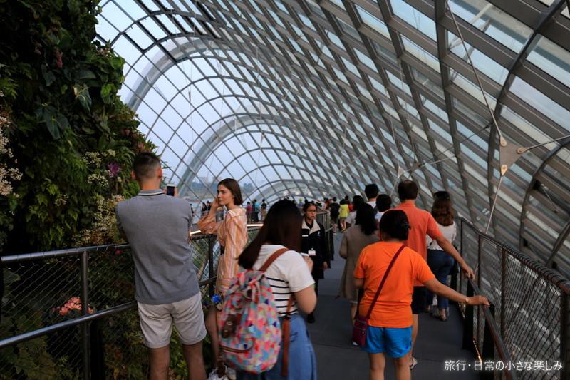 クラウド・フォレスト シンガポール観光